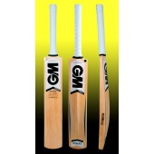 GM Icon F2 Maestro Kashmir Willow Cricket Bat