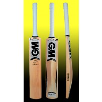 GM Icon F2 101 Kashmir Willow Cricket Bat