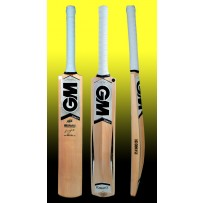 GM Icon F2 202 Kashmir Willow Cricket Bat