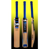 GM Octane F2 Premier Kashmir Willow Cricket Bat
