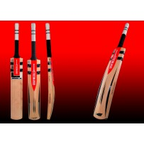 Gray Nicolls Oblivion E41 GN1 Grade 3 English Willow Cricket Bat