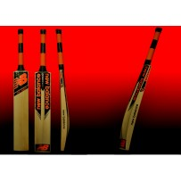 NB DC580 Grade 3 English Willow Cricket Bat